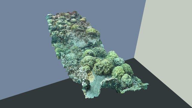 Ada - High Complexity - Site 3 CC 3D Model