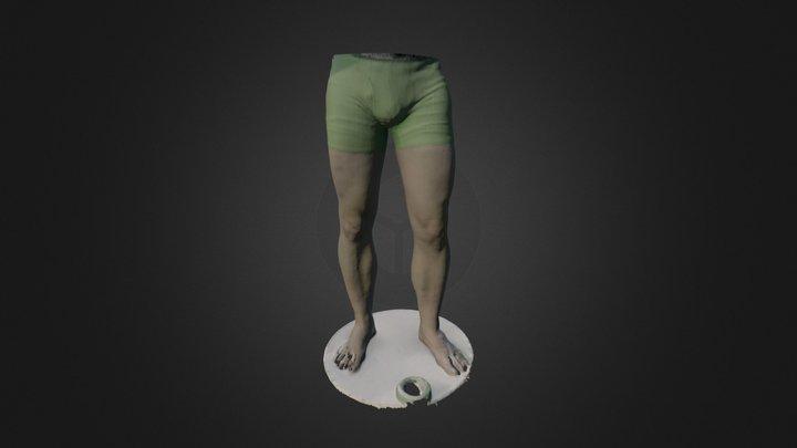 Lower Body Posture 3D Model