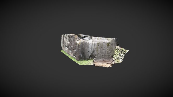 Copt Howe Rock Art Excavation 3D Model