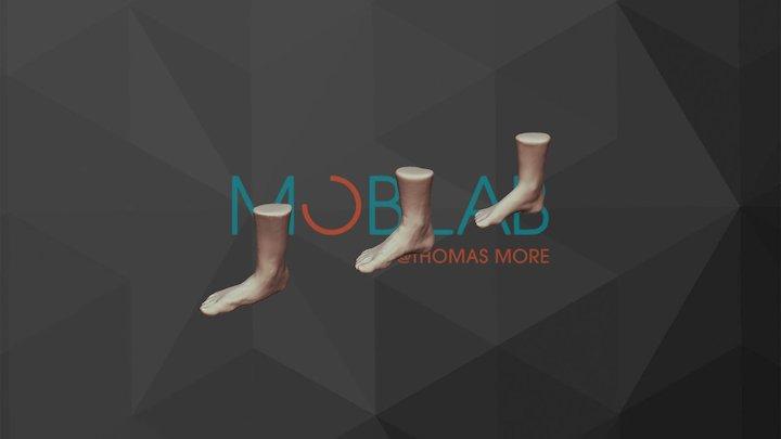 Foot Types 3D Model