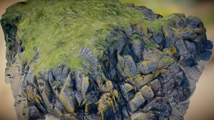 Rocky outcrop 3D Model