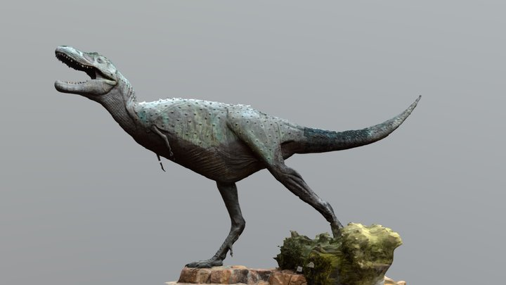 Albertosaurus Statue Photogrammetry 3D Model