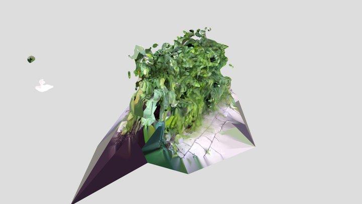 plant_02 3D Model