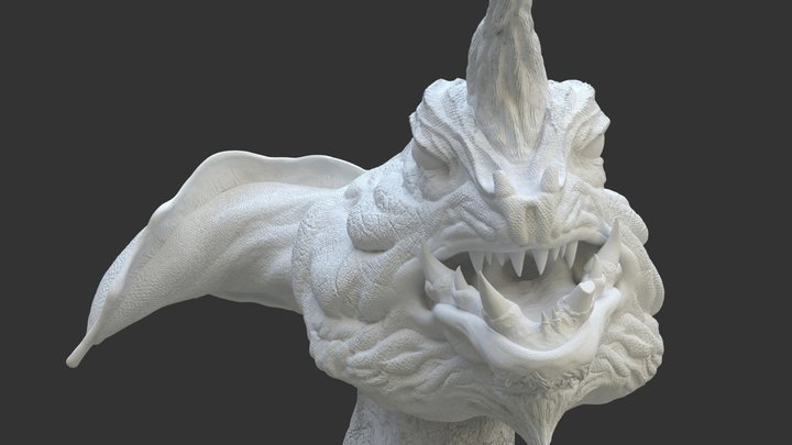 Moray 3D Model