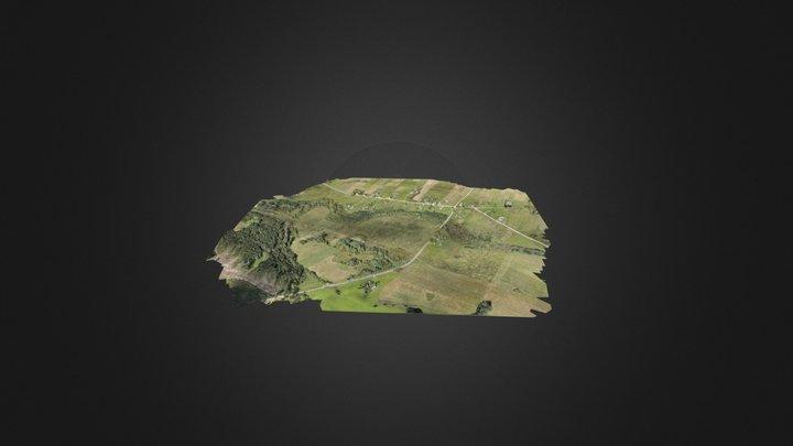 Kločiūnai 3D Model