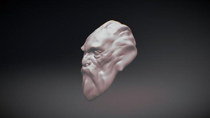 Head Practice 3D Model