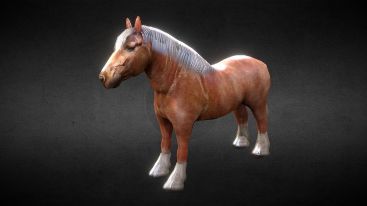 Breton Horse 3D Model