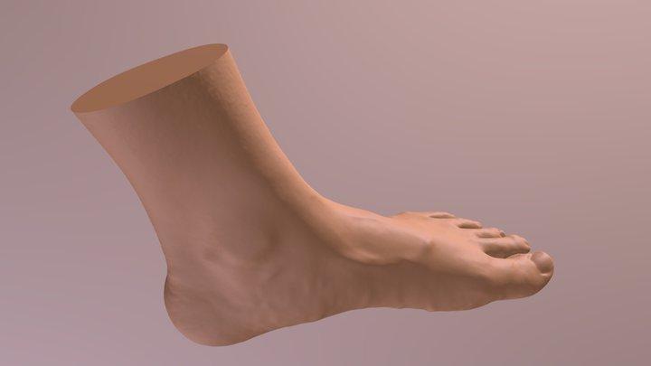 Left-foot / EinscanPro 2x Plus - test 3D Model