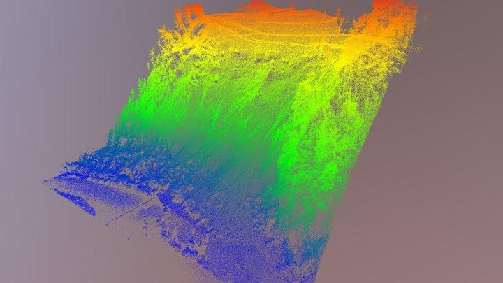 5 - Perarolo di Cadore (BL) - Rilievo Lidar 3D Model