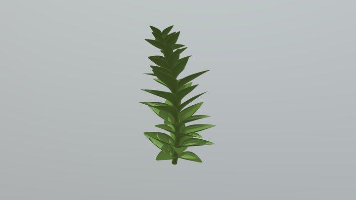 BRYOPHYTE 3D Model
