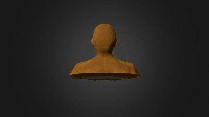 My frist zbrush human male head model 3D Model