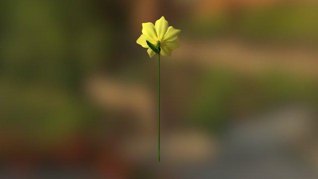 Narcissus 3D Model