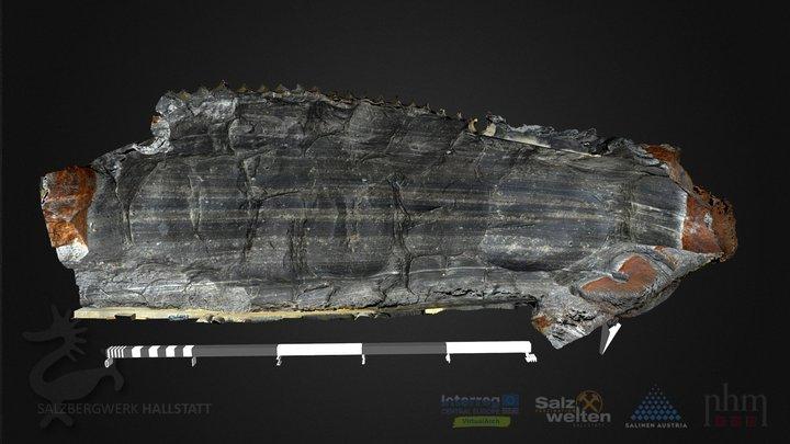 Eisenzeitliche Abbauspuren (Stüger-Werk) 3D Model