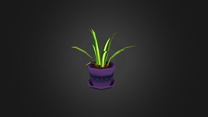 Spider Plant 3D Model