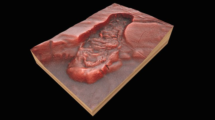 Landslide Red Relief Image Map - WA/USA 3D Model
