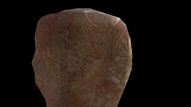Rock #2 3D Model