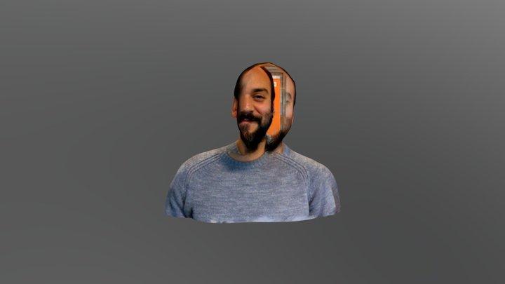 Pato on drugs 3D Model