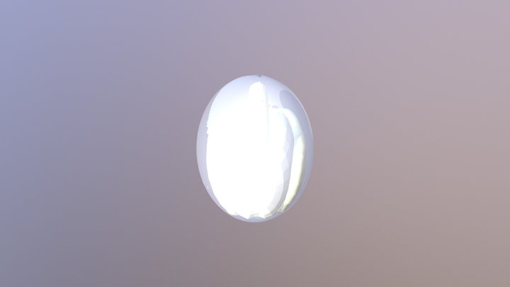 Botryllus3D-18-12 17 3D Model