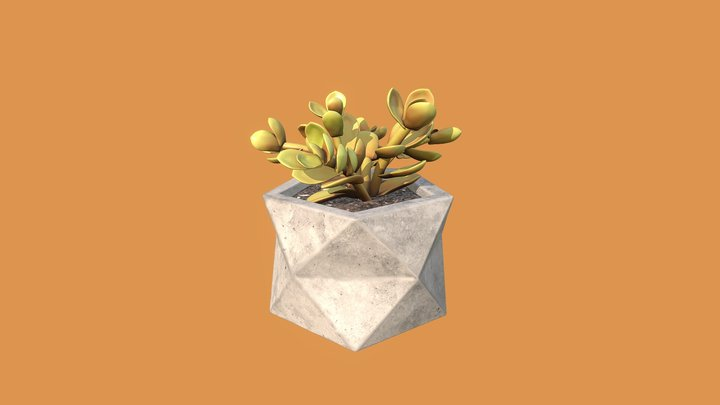 Polyhedral Cactus 3D Model