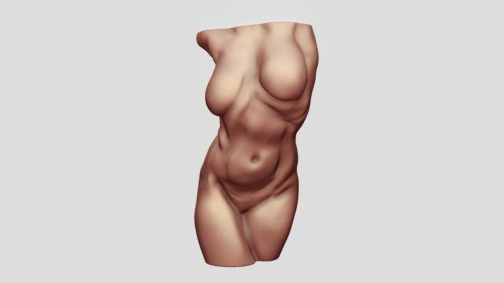 Dynamic Female Torso Sculpt 3D Model