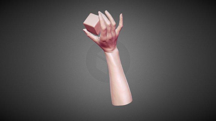 scan_hand_take40 3D Model