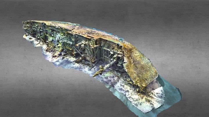 Rio Janeiro Maru, WWII wreck Chuuk Lagoon 3D Model