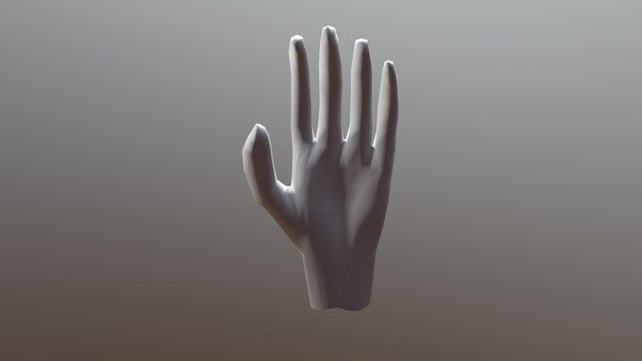 opdracht 3d hand 3D Model