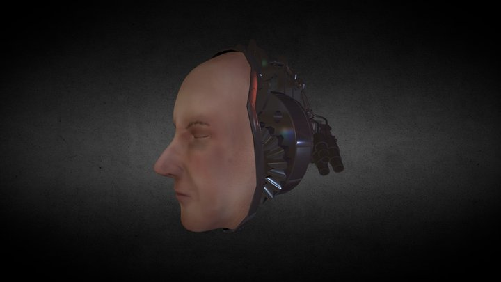 Anatomy Head Machine 3D Model