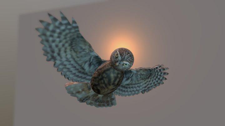 Cartoonish owl lowpoly test. 3D Model