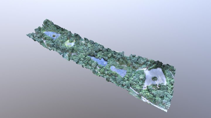 Bookham Ponds 3D Model