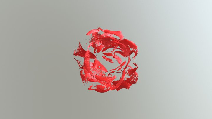 Rose Aug 30-2017 360 Macro Vol Merge B 3D Model