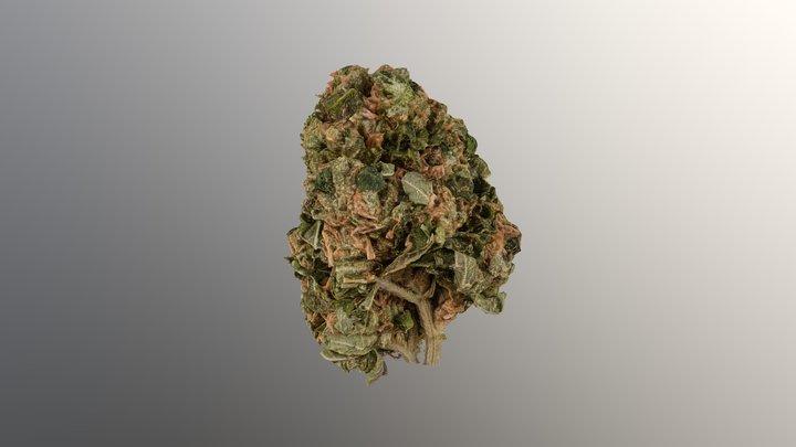 Marijuana Flower 3 3D Model