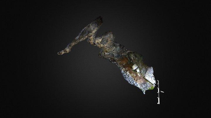 Bärenfalle - Tennengebirge (AUT) 3D Model