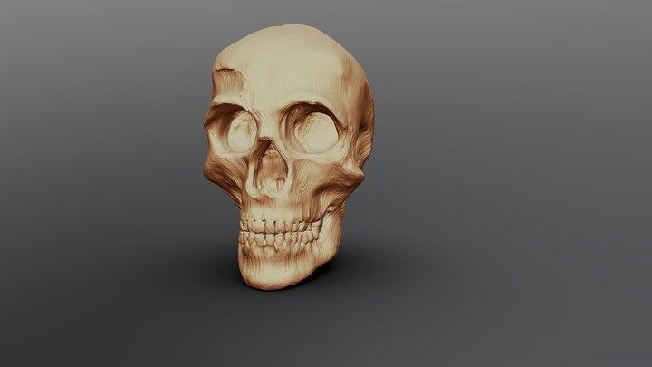 Skull Challenge 3D Model