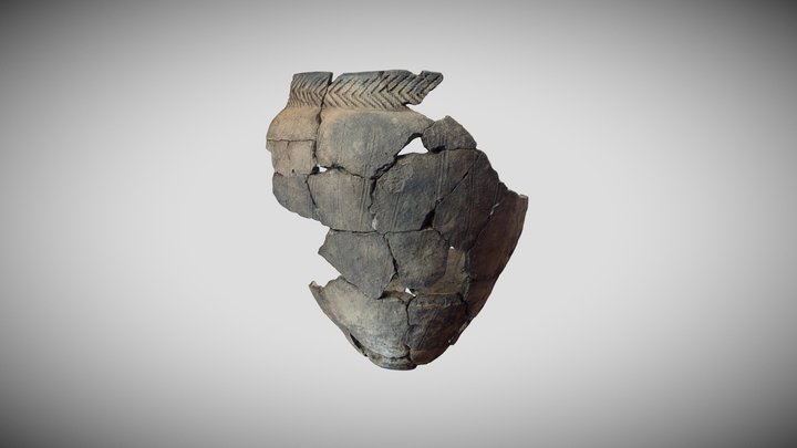 Yamnaya culture vessel, Generalka 2 3D Model