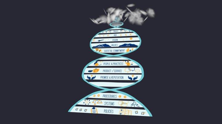 Organizational DNA 3D Model