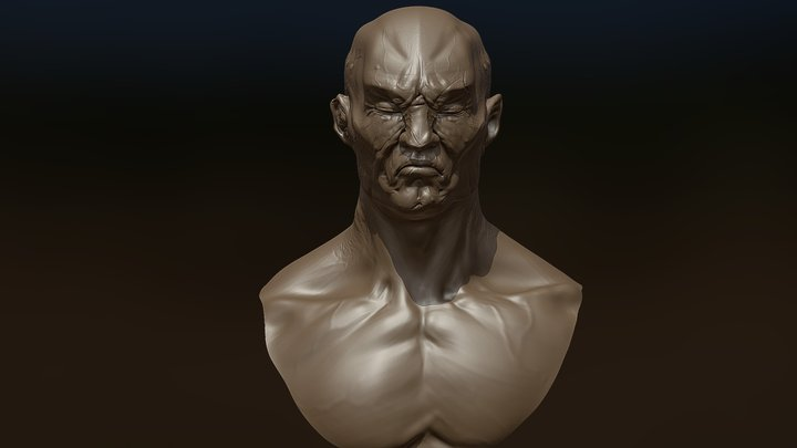 Orc Shogun Bust Decimated 3D Model