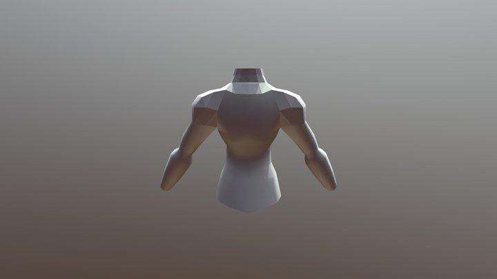 Torso Sample 3D Model