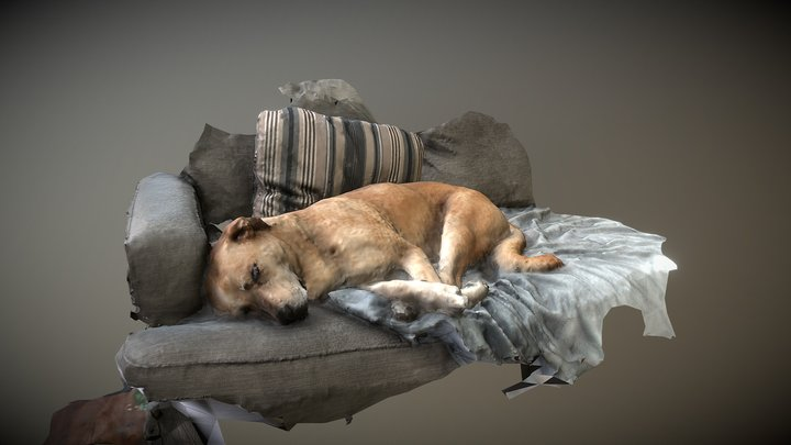 Dozing Dog 3D Model