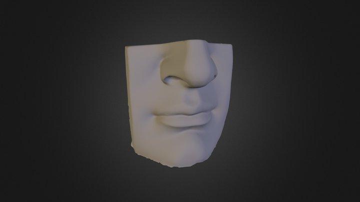 Taaveti nina 3D Model