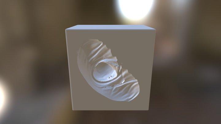 Reverse MOLD Steve Capano Bust 3D Model