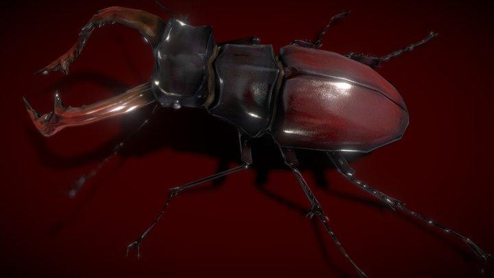 Stag Beetle Lowpolys 3D 3D Model