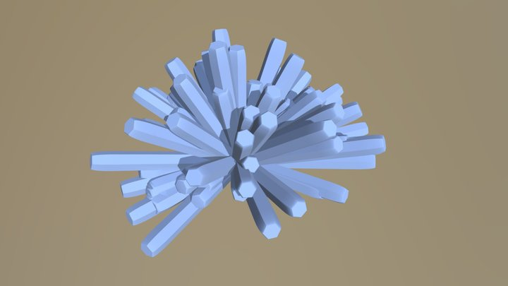 Coral Design 3D Model
