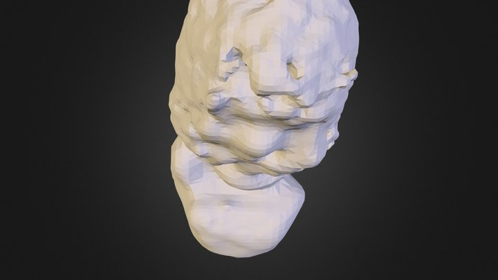 Sweat_choas 3D Model