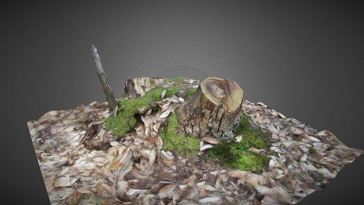 Mossy Stump 3D Model