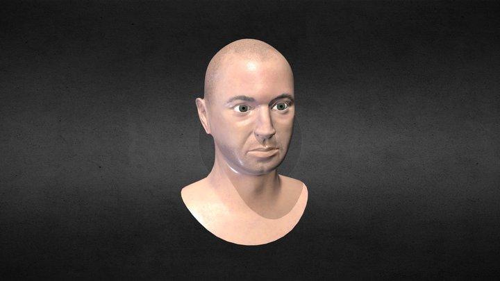 Head Likeness 3D Model