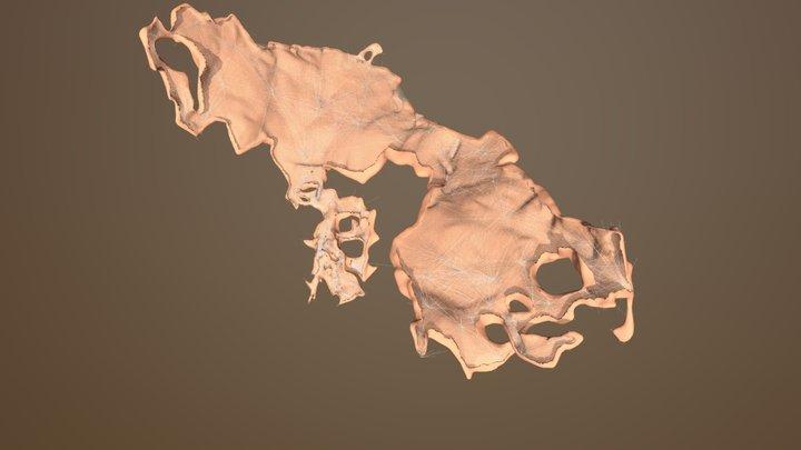 Cave- Arch V3 3D Model