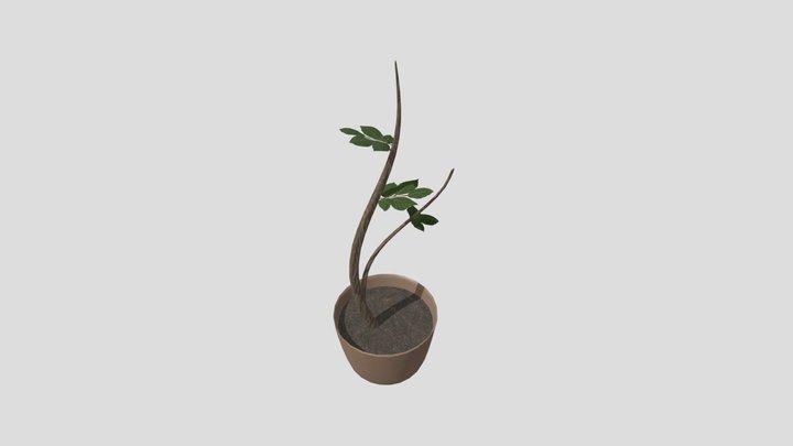wk8_plant 3D Model