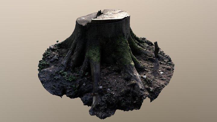 Tree Stump Scan 3D Model