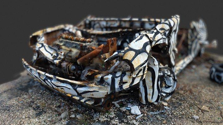 Car Wreck Scan (Low Poly Version) 3D Model